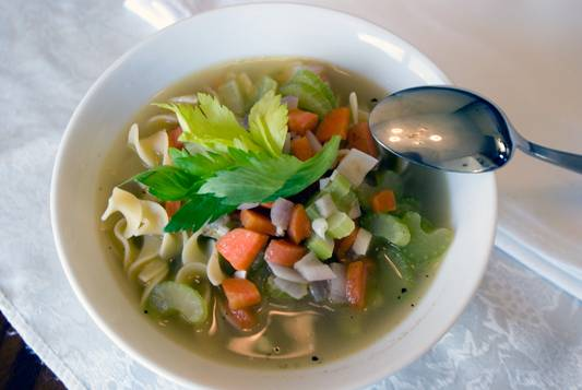 Chicken-Noodle-soup-2