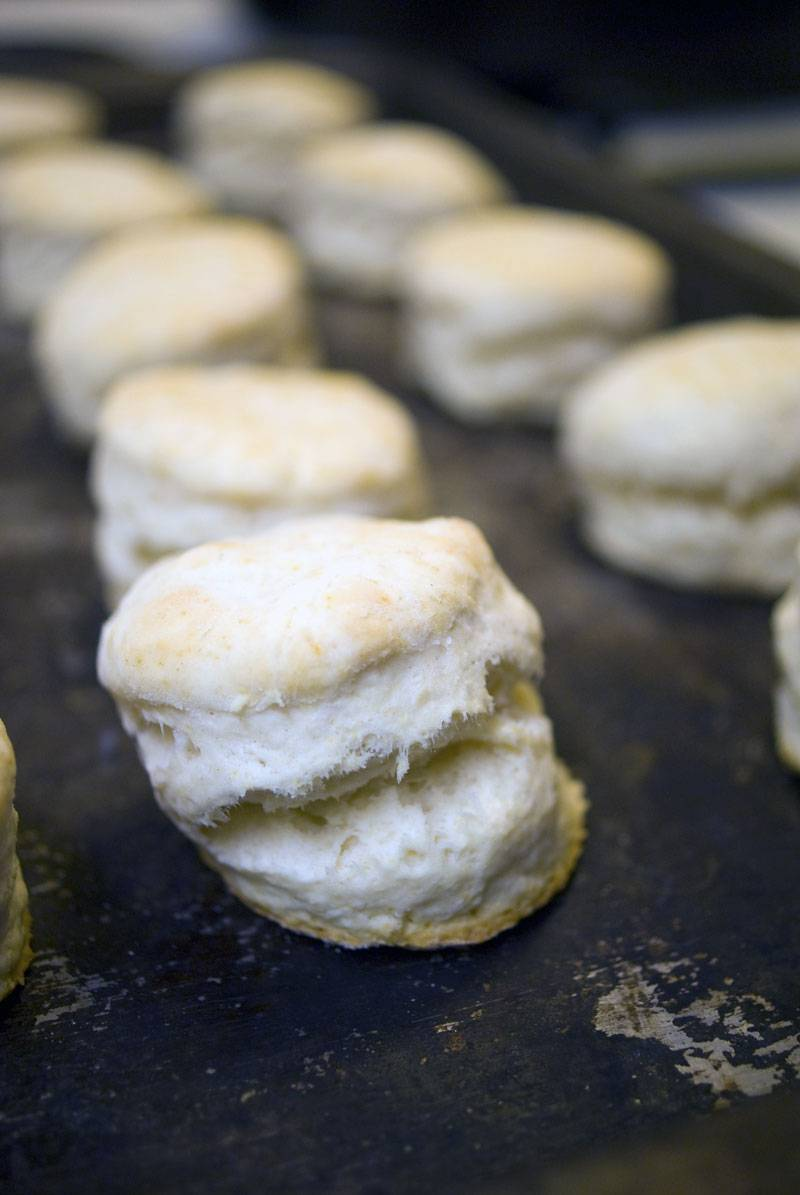 Southern Style Biscuits – Down Home Comfort Food