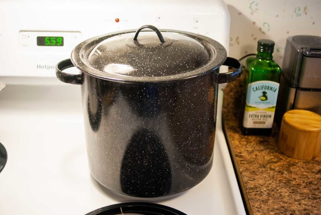 Pot of boiling water with lid on